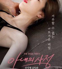 My Wife's Excuse (2016) KOREAN